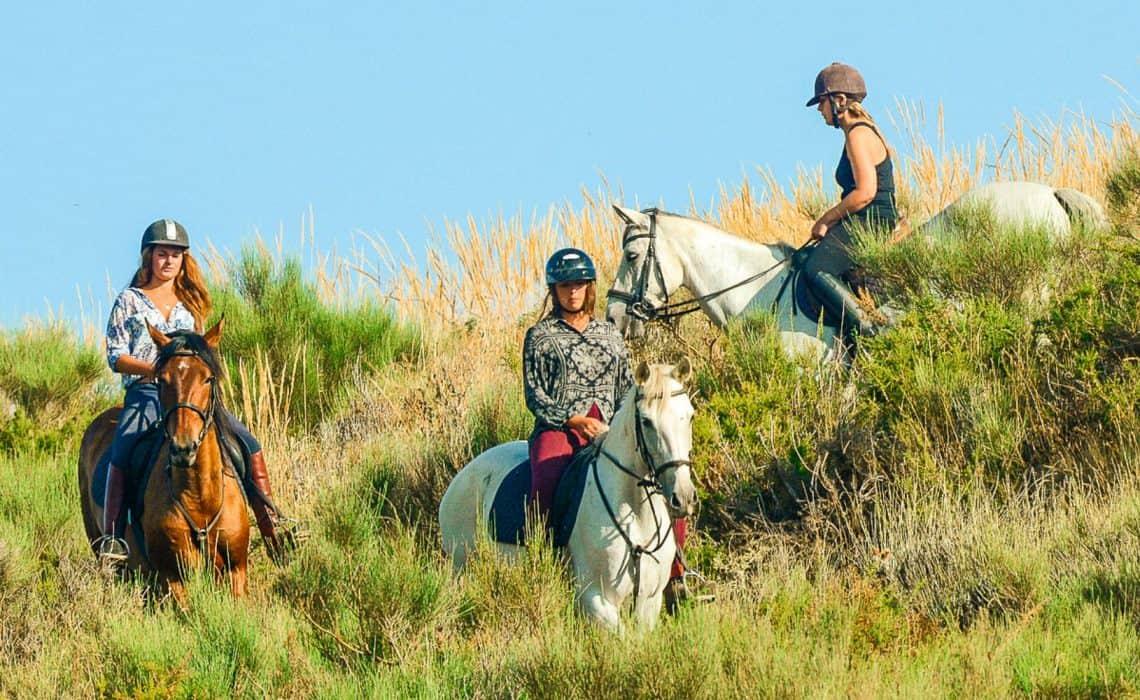 Portugal Surflife Atlantic Riders Horseback riding
