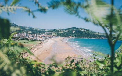 surflife surfvakanties booking zarautz