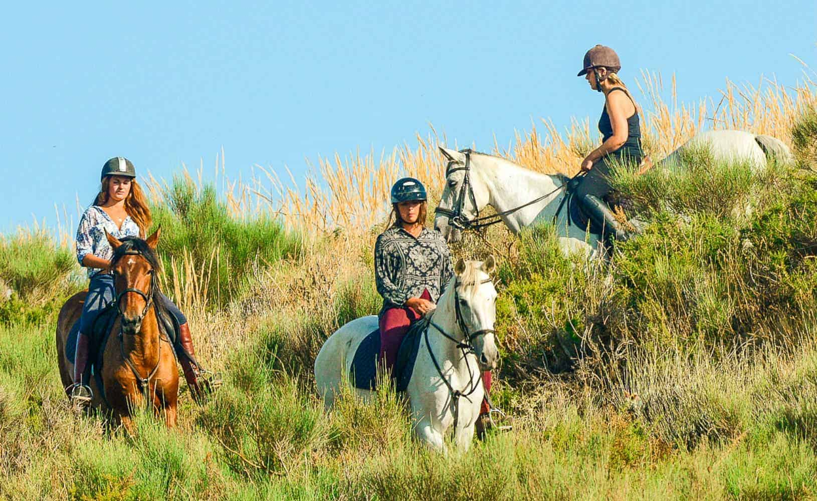 Paardrijden in Portugal een actieve vakantie met Surflife