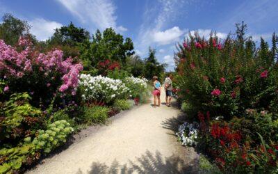 Website - Region - Mimizan - Promenade Fleurie